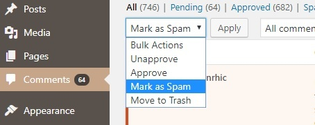 WP Spam comments problem