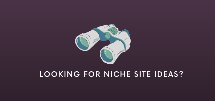 How to Choose the Best Niche Site Idea